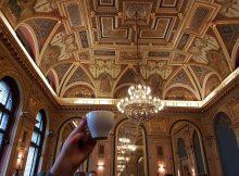 book cafe alexandra